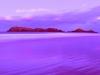 delicate-nobby-sunset-2_1