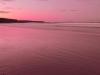 delicate-nobby-sunset_1